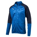 more info on Puma CUP Training Jacket Core (13-14YRS)