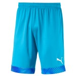 more info on Puma CUP short GK