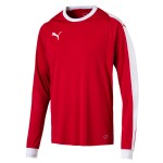 more info on Puma Liga GK shirt