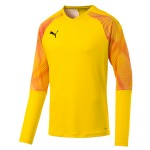 more info on Puma CUP GK jersey (13-14YRS)