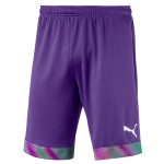 more info on Puma CUP short GK (13-14YRS)