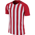 more info on Nike Striped Division III Short Sleeved Kit Deal (Adults)