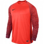more info on Nike Gardien GK Jersey Long Sleeved