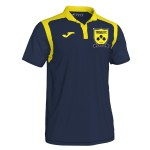 more info on Tividale FC Polo (Adults)
